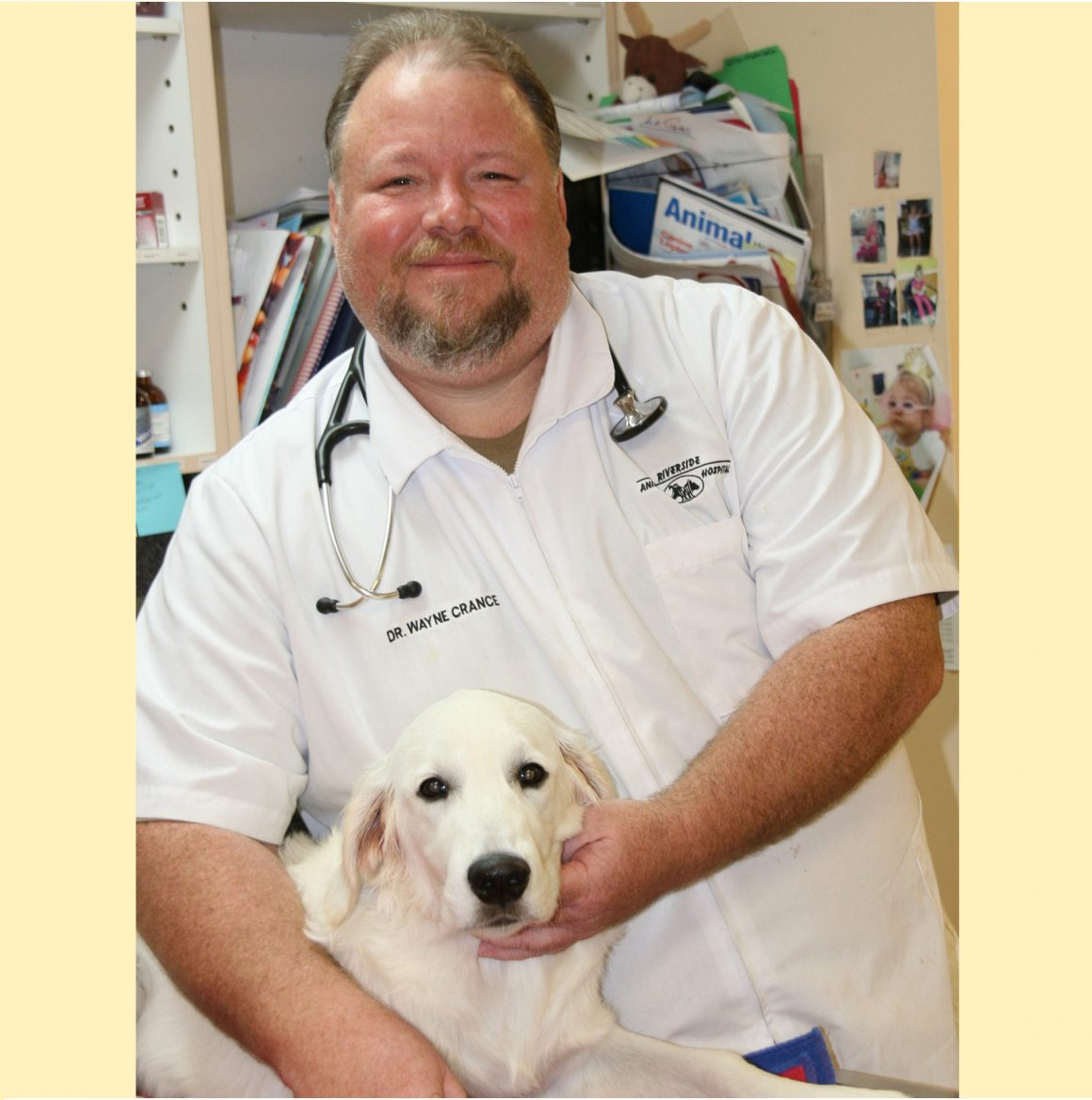 Riverside Animal Hospital…Does Your Pet Have Allergies