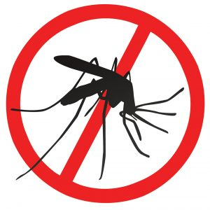 April and May Showers Bring June… Not Flowers, Mosquitoes!